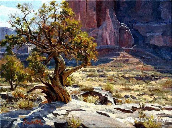 美国著名传统风景画家马克霍沃思插图95
