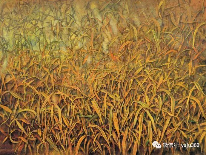 花卉油画 旅英画家蔡小丽作品插图39