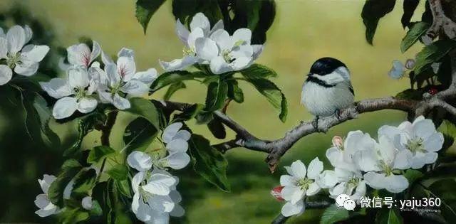 加拿大Julia Hargreaves花鸟绘画插图7