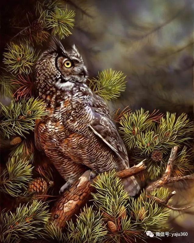 加拿大Julia Hargreaves花鸟绘画插图23