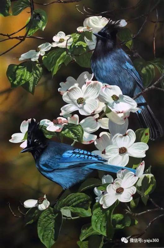 加拿大Julia Hargreaves花鸟绘画插图61