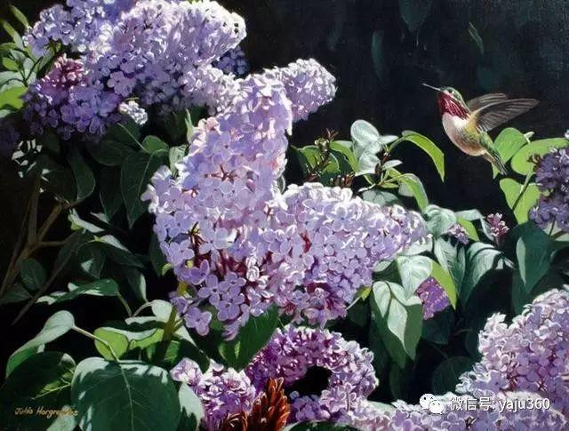 加拿大Julia Hargreaves花鸟绘画插图83