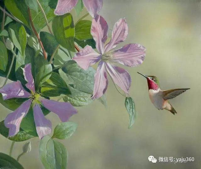 加拿大Julia Hargreaves花鸟绘画插图129