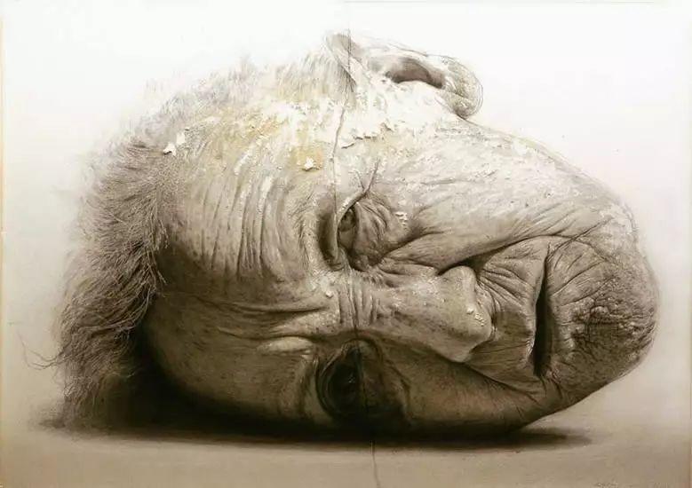 西班牙Golucho油画作品插图32