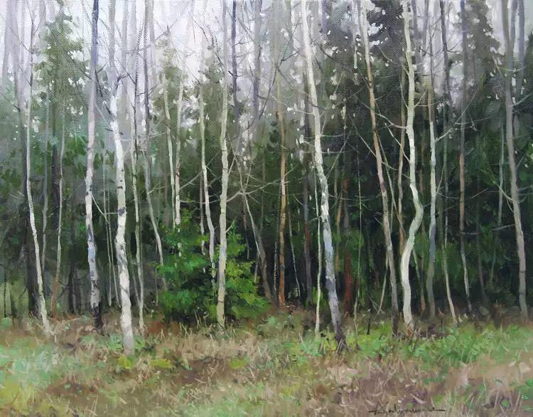 俄罗斯Savchenko Aleksey风景画欣赏插图37