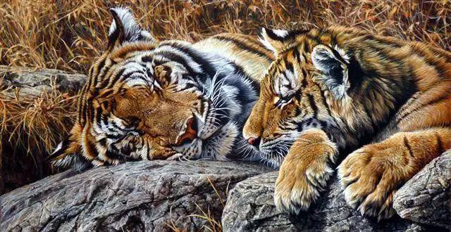 油画世界 英国艾伦·亨特猛兽动物画插图5