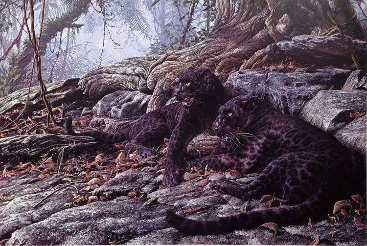 油画世界 英国艾伦·亨特猛兽动物画插图11