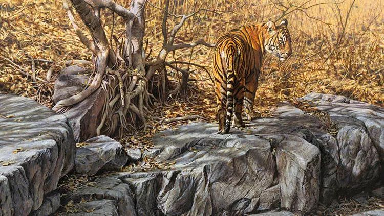 油画世界 英国艾伦·亨特猛兽动物画插图13