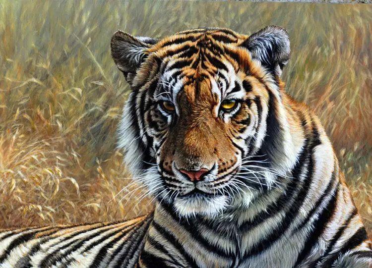 油画世界 英国艾伦·亨特猛兽动物画插图27