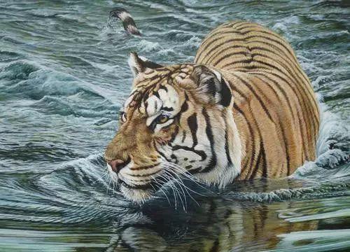 油画世界 英国艾伦·亨特猛兽动物画插图33