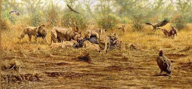 油画世界 英国艾伦·亨特猛兽动物画插图37