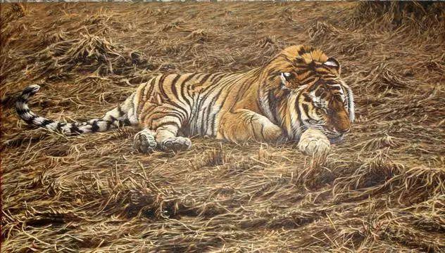油画世界 英国艾伦·亨特猛兽动物画插图41