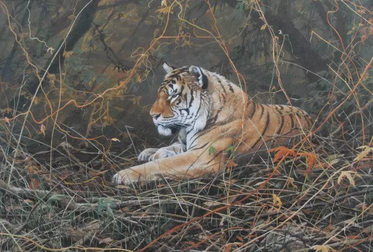油画世界 英国艾伦·亨特猛兽动物画插图49