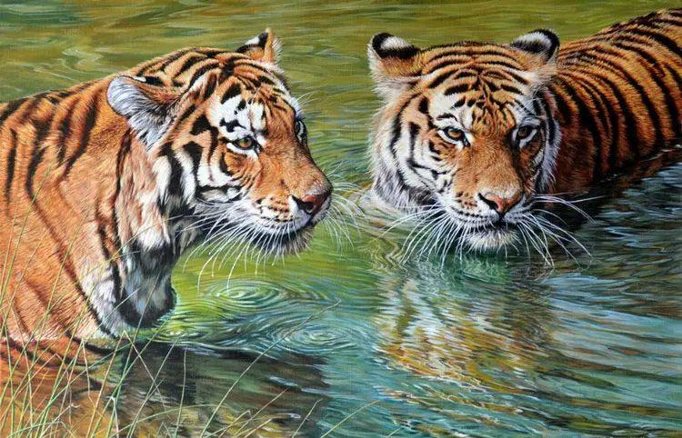 油画世界 英国艾伦·亨特猛兽动物画插图53