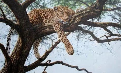 油画世界 英国艾伦·亨特猛兽动物画插图59