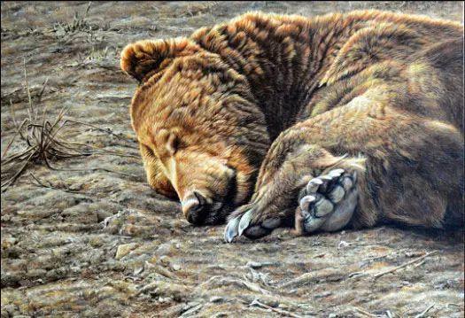 油画世界 英国艾伦·亨特猛兽动物画插图61