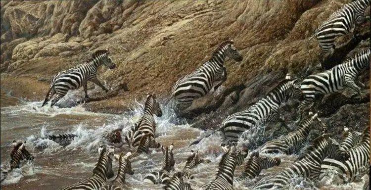 油画世界 英国艾伦·亨特猛兽动物画插图63
