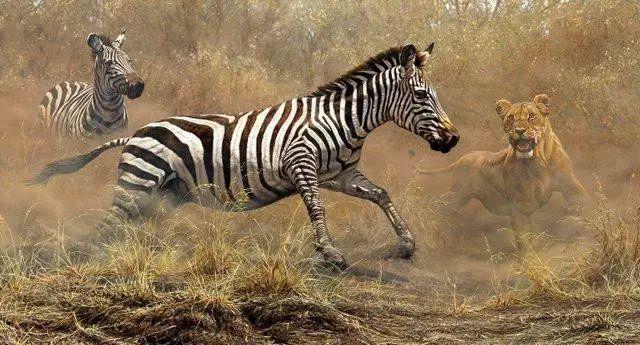 油画世界 英国艾伦·亨特猛兽动物画插图71