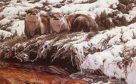 油画世界 英国艾伦·亨特猛兽动物画插图73
