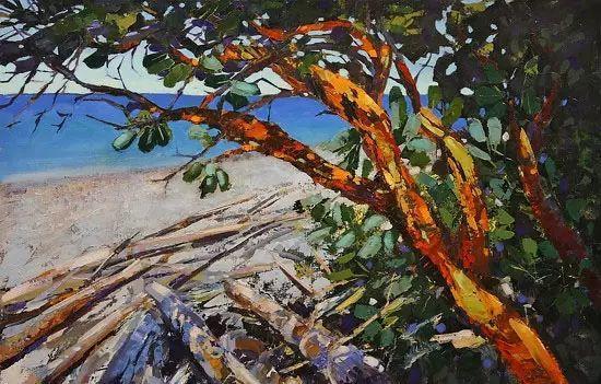 油画世界 加拿大画家不一样的风景画插图17