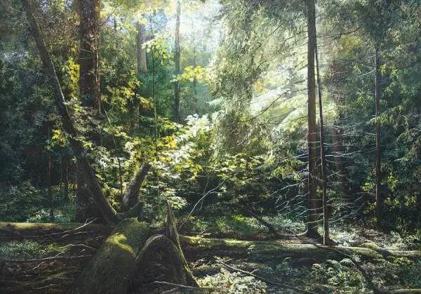 俄罗斯Eugene Burmakin风景画欣赏插图23