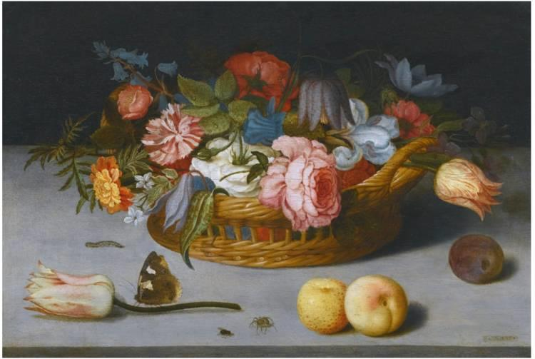 花卉静物 荷兰画家Balthasar van der Ast作品插图17