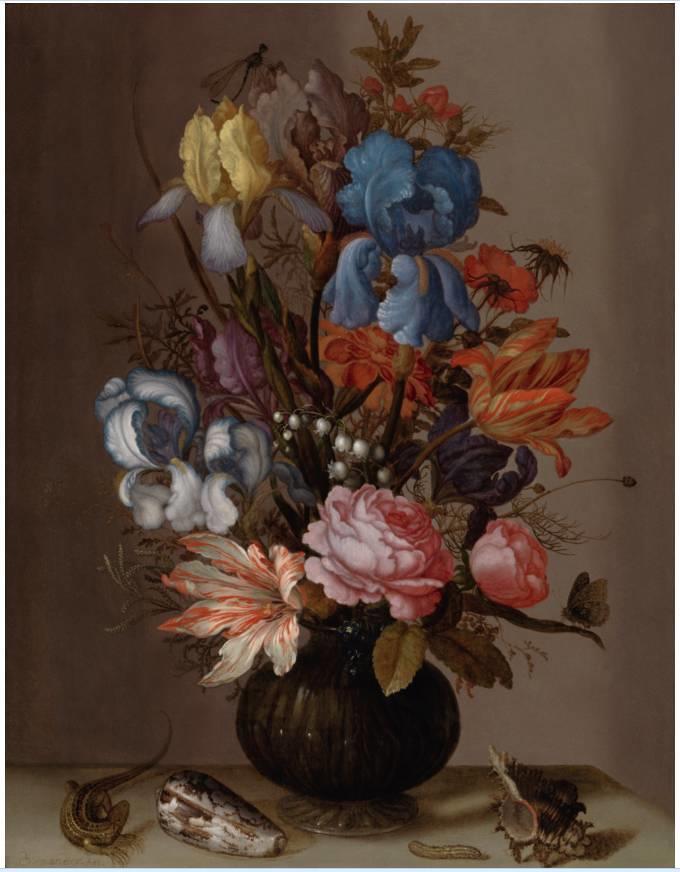花卉静物 荷兰画家Balthasar van der Ast作品插图29