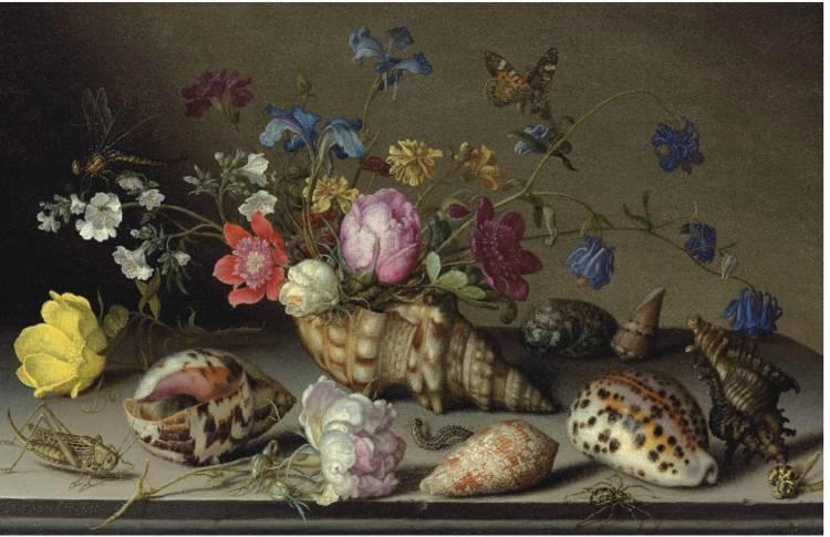 花卉静物 荷兰画家Balthasar van der Ast作品插图55