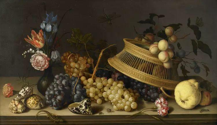 花卉静物 荷兰画家Balthasar van der Ast作品插图69
