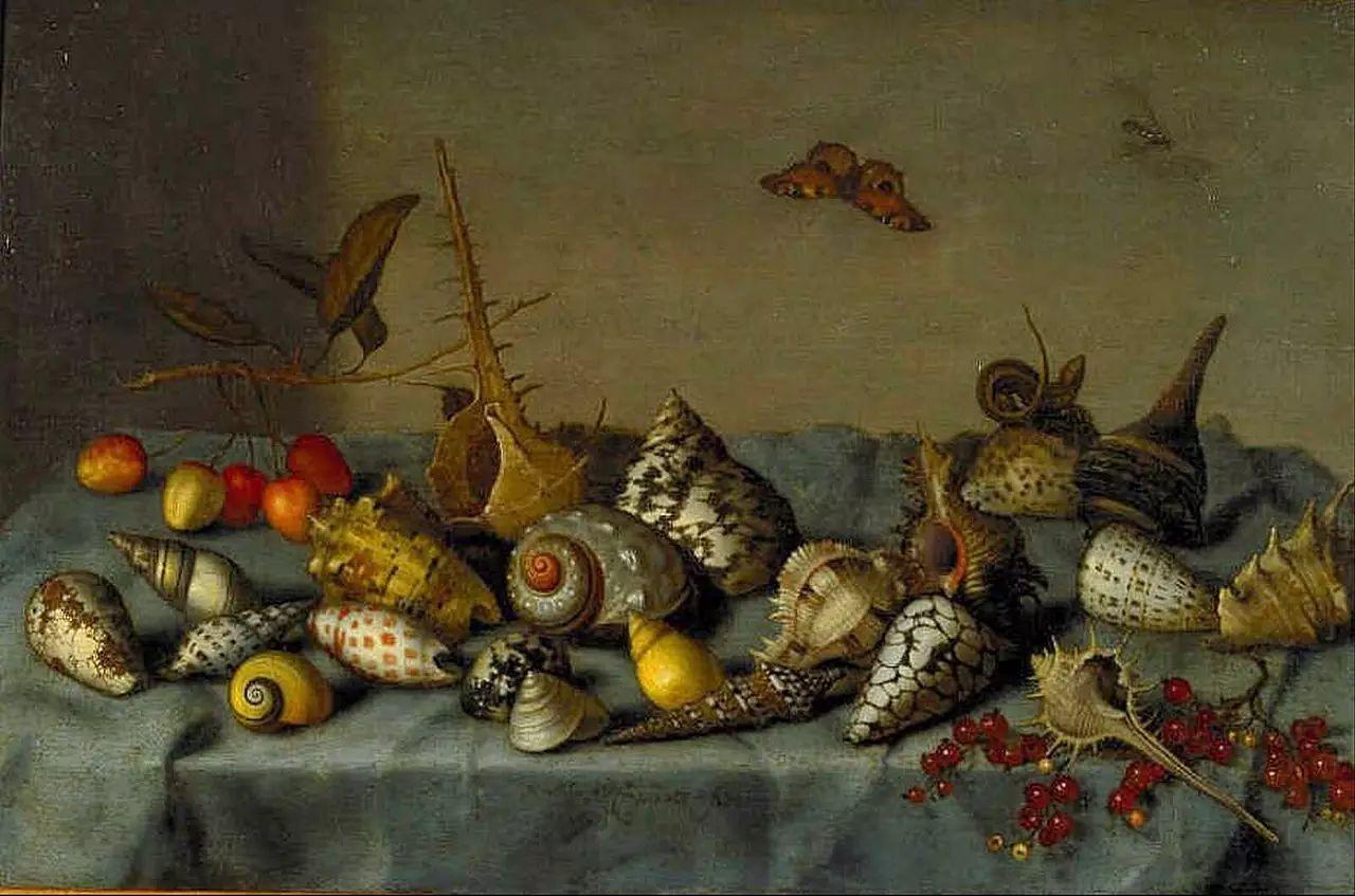 花卉静物 荷兰画家Balthasar van der Ast作品插图107