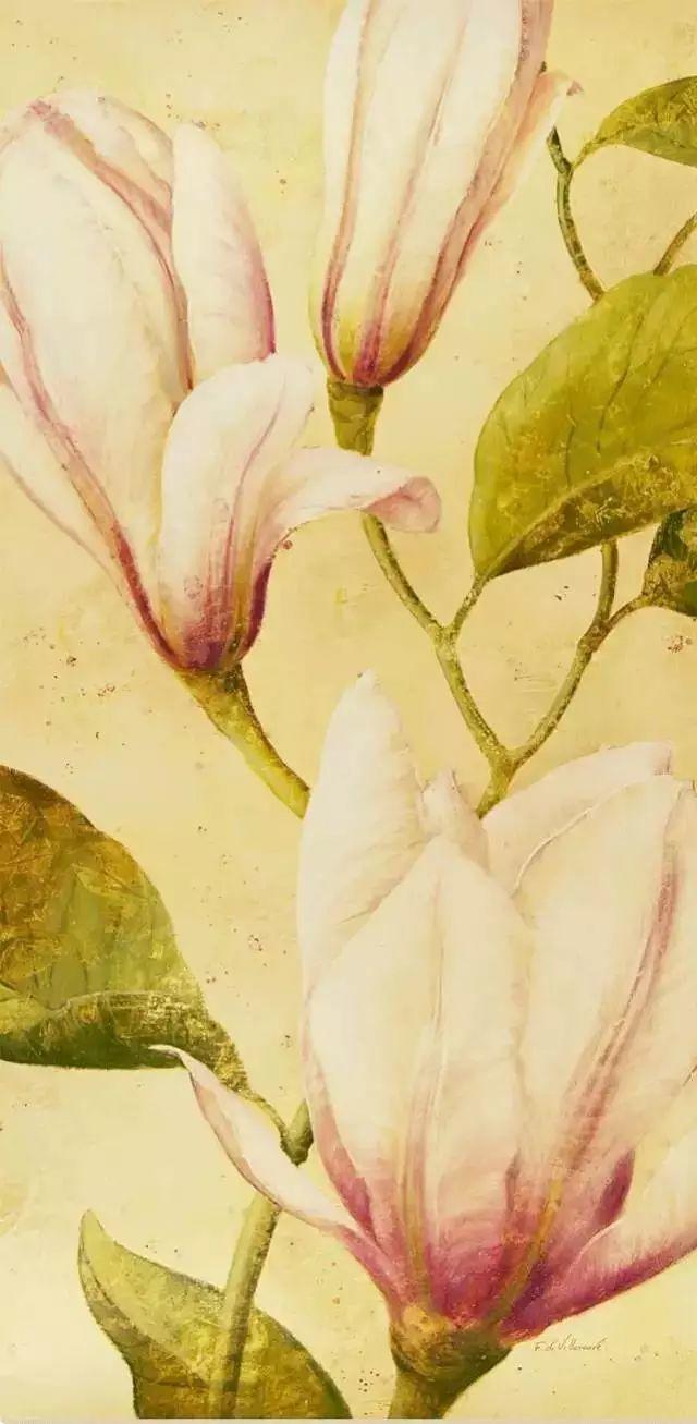 细嗅花间的美好 法国画家Fabrice de Villeneuve插图69