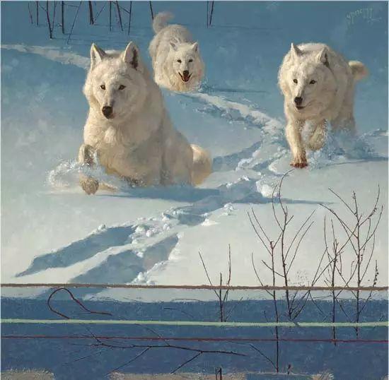 美国Greg Beecham野生动物画插图5