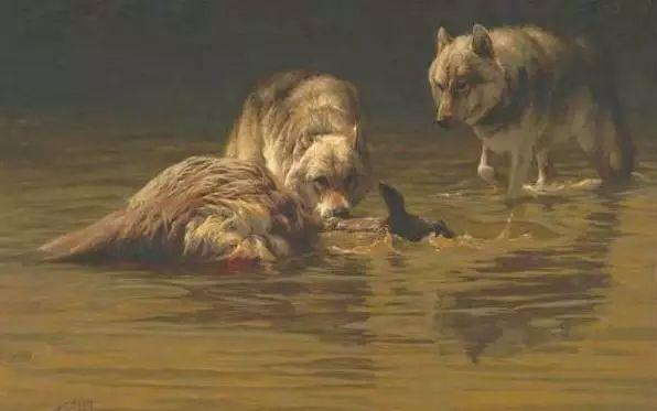 美国Greg Beecham野生动物画插图13