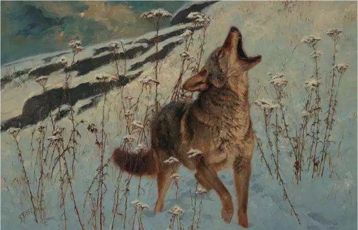 美国Greg Beecham野生动物画插图25
