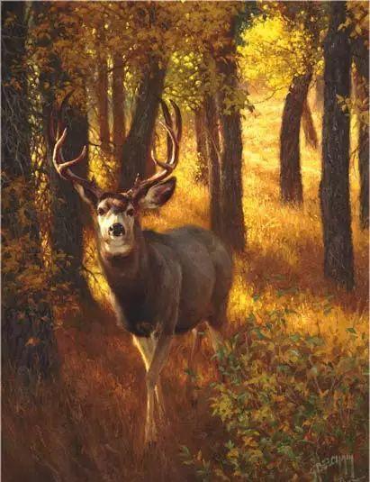 美国Greg Beecham野生动物画插图29