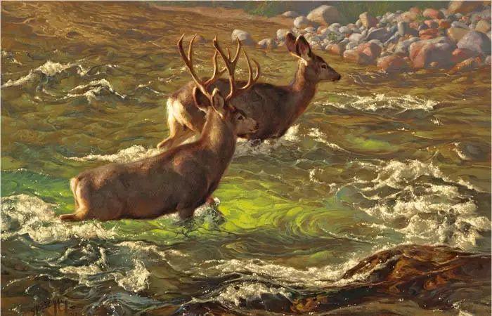 美国Greg Beecham野生动物画插图41