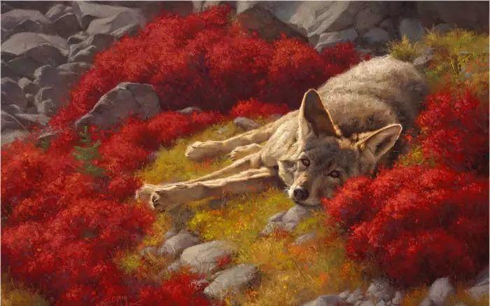 美国Greg Beecham野生动物画插图61