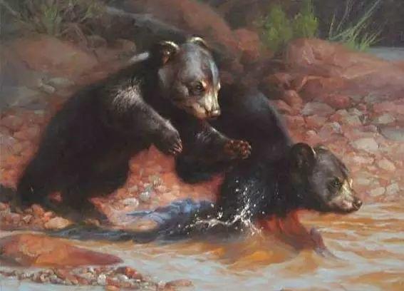 美国Greg Beecham野生动物画插图65