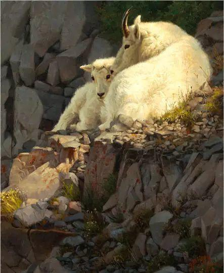美国Greg Beecham野生动物画插图67
