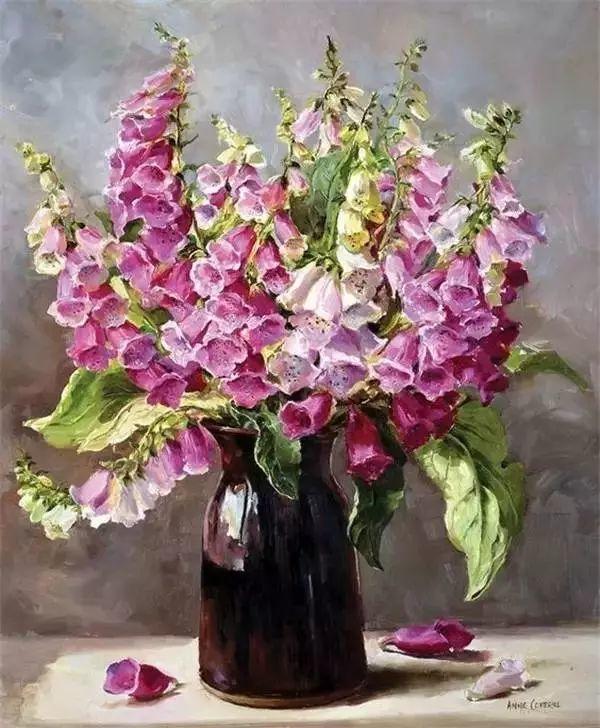 英国画家安妮奶奶的那些花插图15