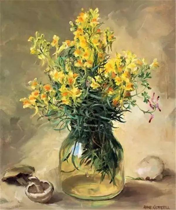 英国画家安妮奶奶的那些花插图31