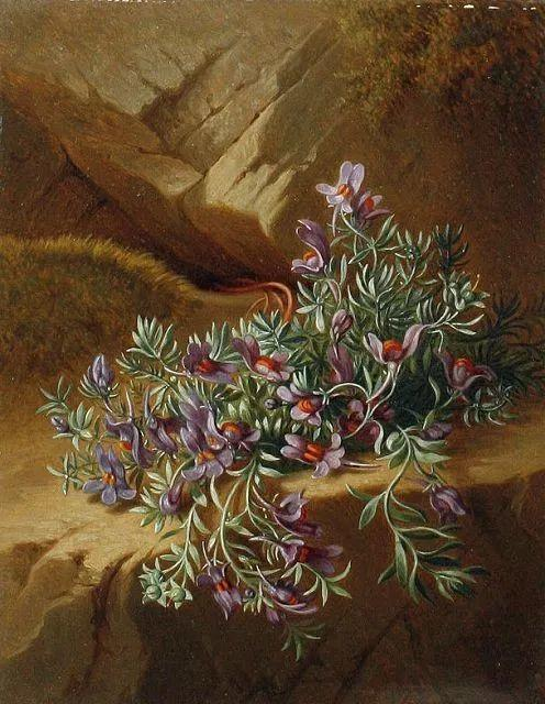 奥地利画家Josef Schuster (Austrian, 1812–1890)插图13
