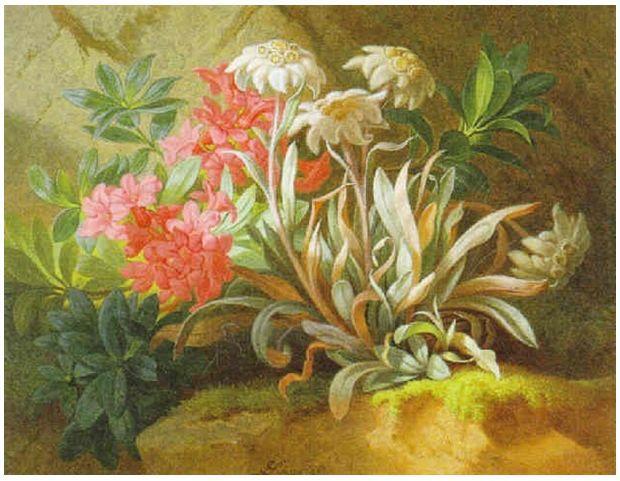 奥地利画家Josef Schuster (Austrian, 1812–1890)插图21