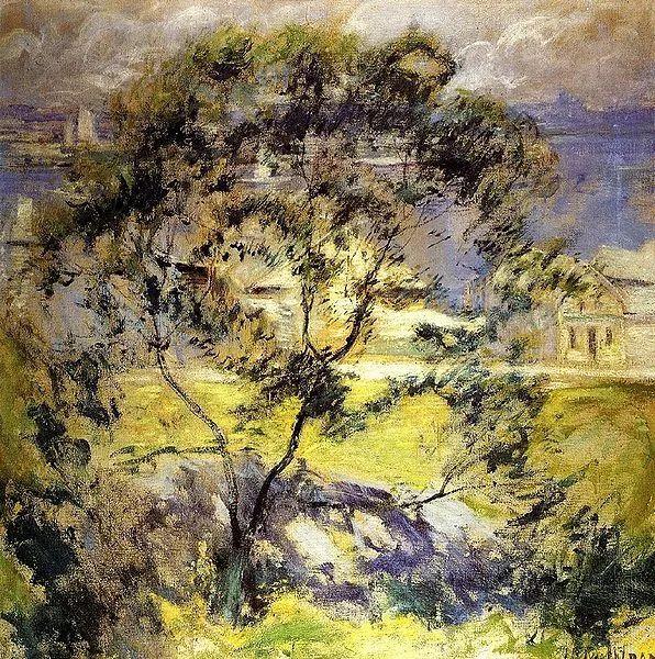 美国印象派风景画家John Henry Twachtman插图37