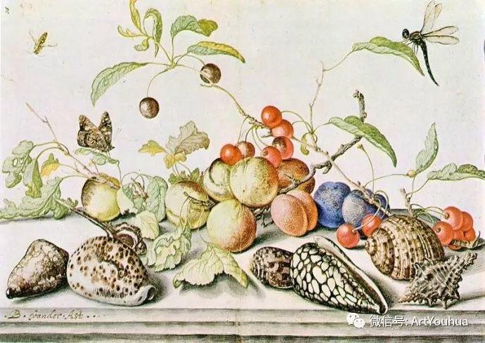 静物花卉油画欣赏 荷兰画家Balthasar van der Ast插图21