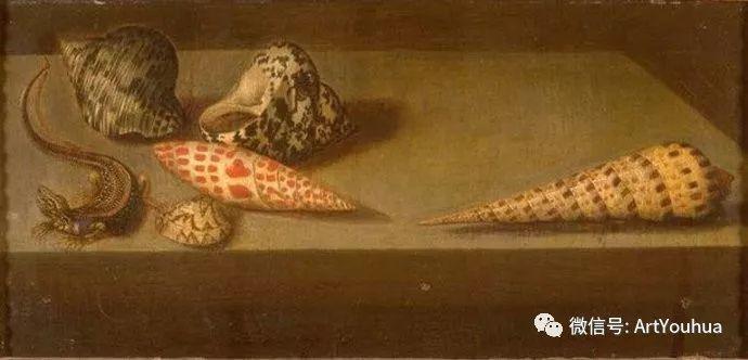 静物花卉油画欣赏 荷兰画家Balthasar van der Ast插图69