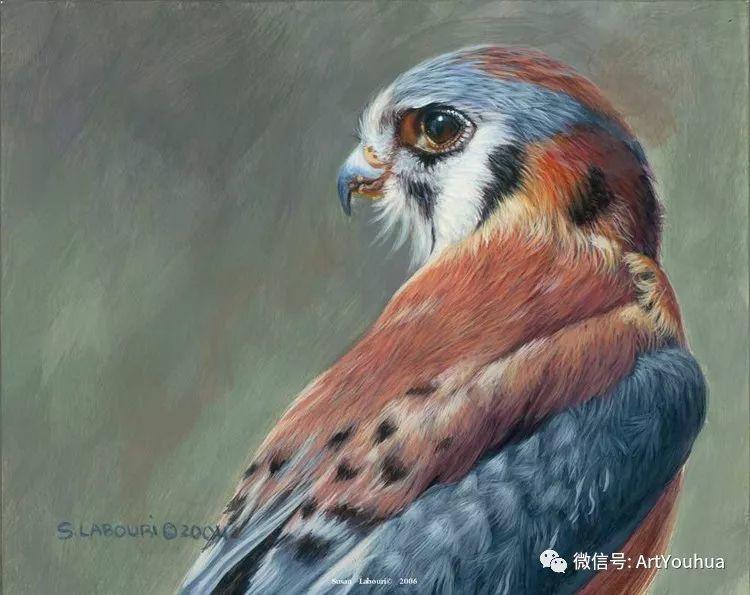 动物 美国Susan Labouri作品欣赏插图1