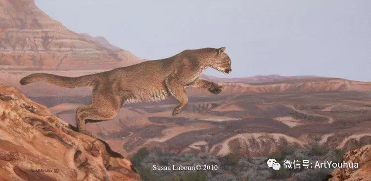 动物 美国Susan Labouri作品欣赏插图3