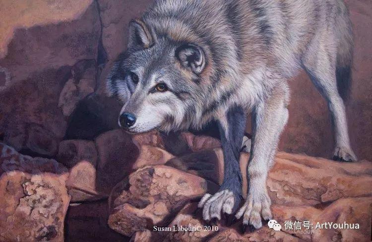 动物 美国Susan Labouri作品欣赏插图7