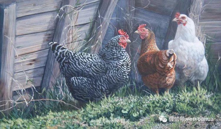 动物 美国Susan Labouri作品欣赏插图13
